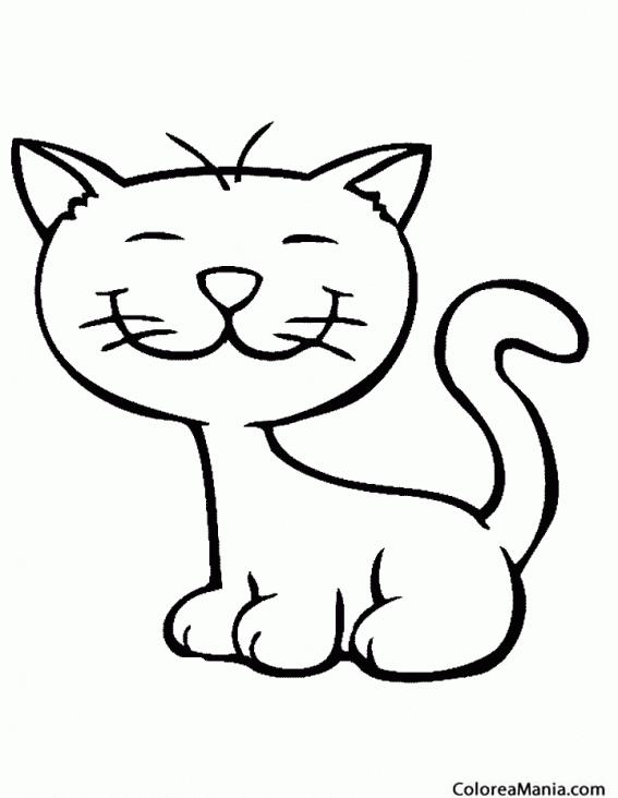 Colorear Gato Dibujo Niños Animales Domésticos Dibujo