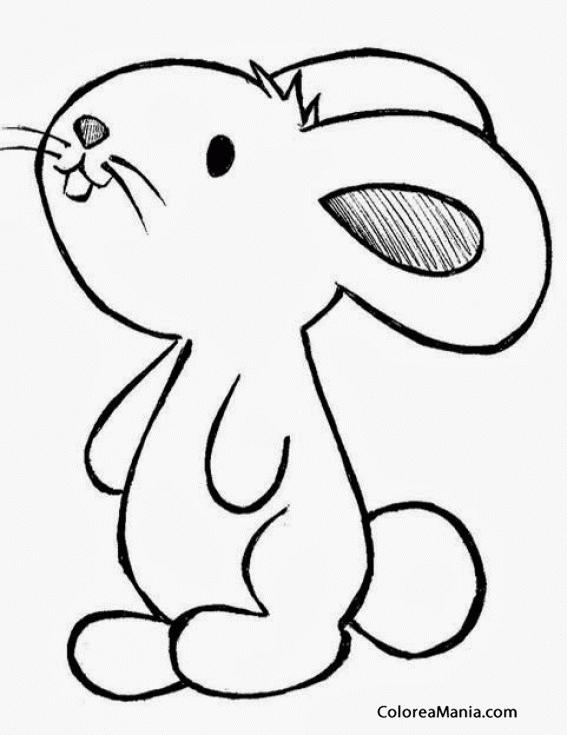 Colorear Conejito Animalitos dibujo para colorear gratis