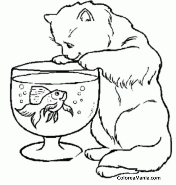 Colorear Gato apunto de pescar en la pecera (Animales Domésticos ...