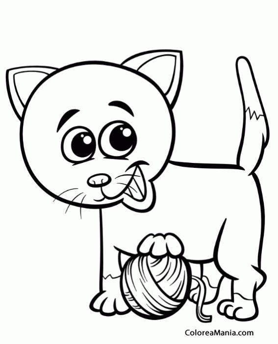 Colorear Gato Jugando Con Ovillo Hilo Animales Domésticos Dibujo