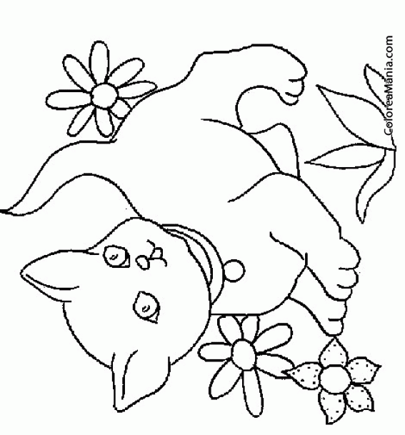 Colorear Gatos con flores (Animales Domésticos), dibujo para ...