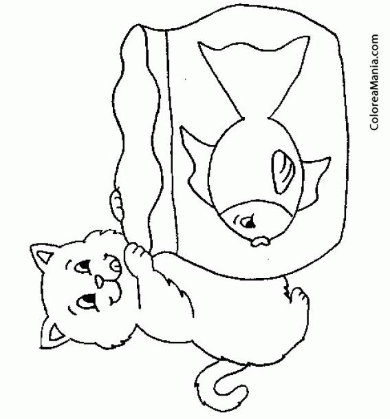 Colorear Gato ante la pecera (Animales Domésticos), dibujo para ...