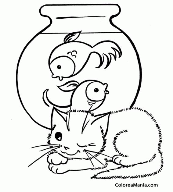 Colorear Gatito travieso vigilando pecera (Animales Domésticos ...