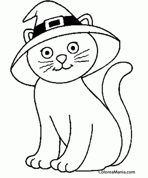 Colorear Gato Con Sombrero Animales Domésticos Dibujo
