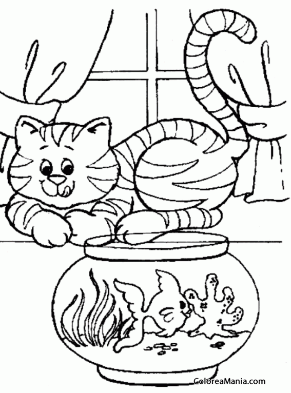 Colorear Gato relamiéndose ante pecera (Animales Domésticos), dibujo ...