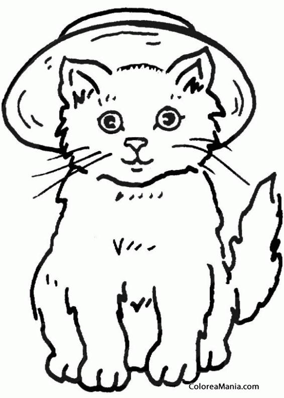 Colorear Gato Con Sombrero 2 Animales Domésticos Dibujo
