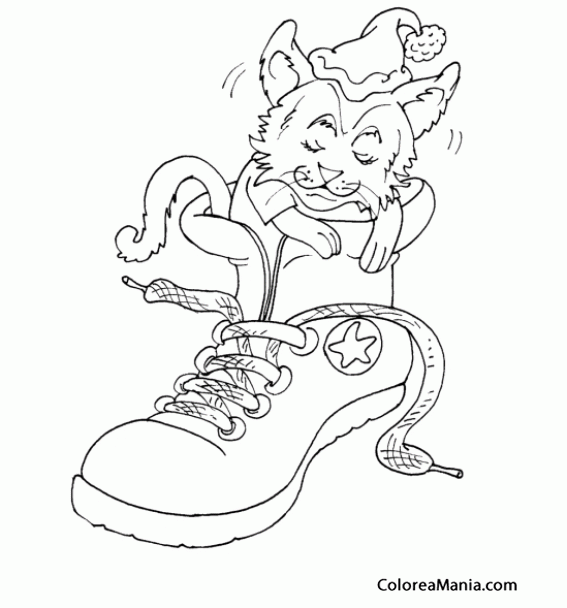 Colorear Gato Dentro De Zapato Deportivo Animales