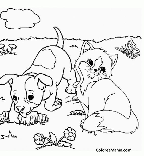 Colorear Gato y perro jugando en la playa Animales Domsticos