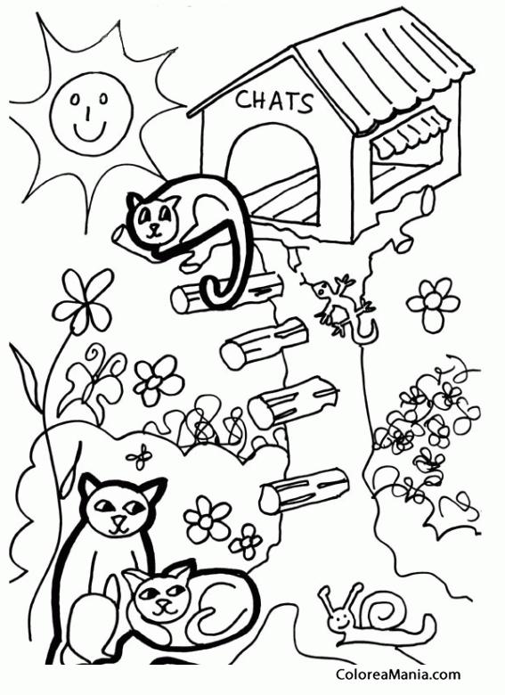 Colorear Gatos en casa del árbol (Animales Domésticos), dibujo para ...