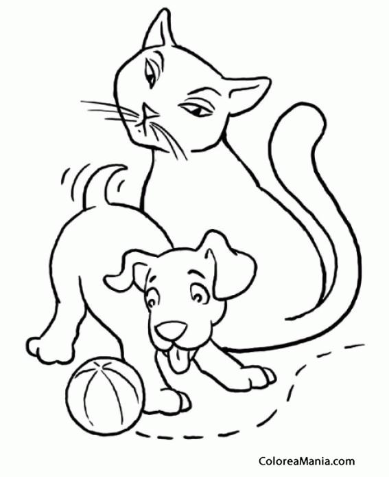 Colorear Gato Y Perro Jugando A Pelota 2 Animales Domésticos