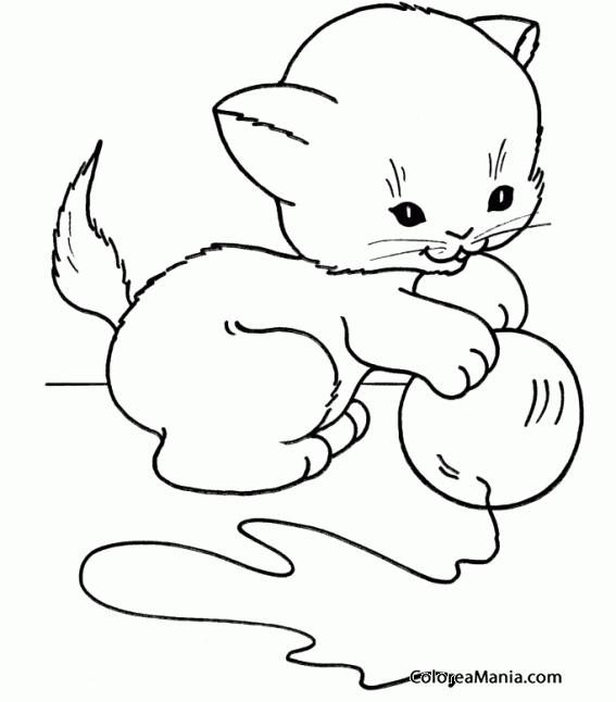 Colorear Gatito Jugando Con Ovillo 2 Animales Domésticos Dibujo