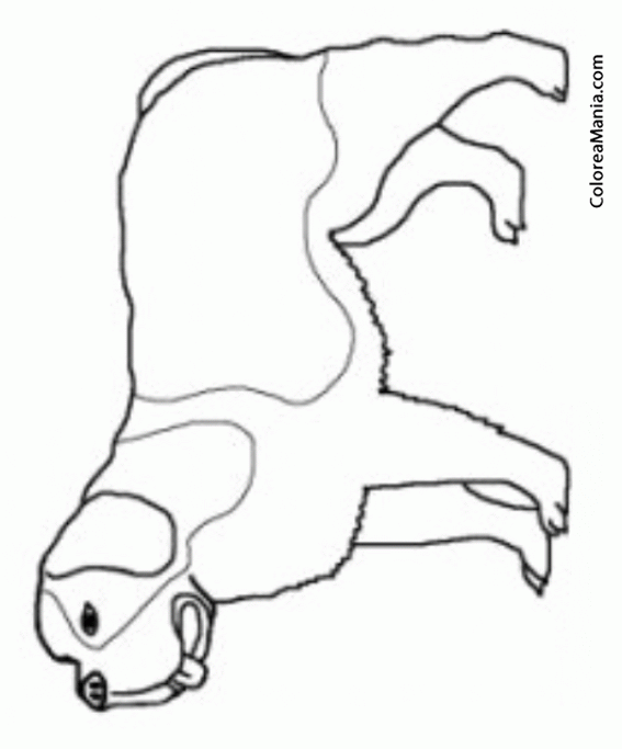Colorear silueta perro san bernardo animales domsticos - Siluetas para imprimir ...