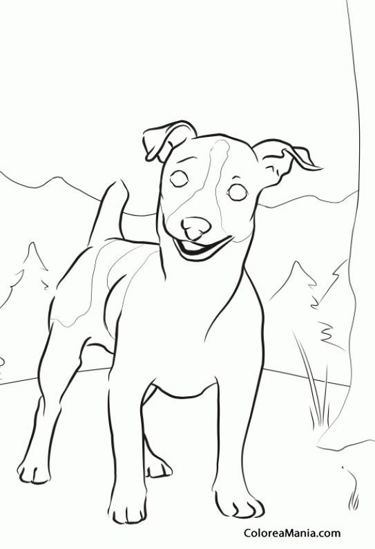 bill russell coloring pages - photo#26