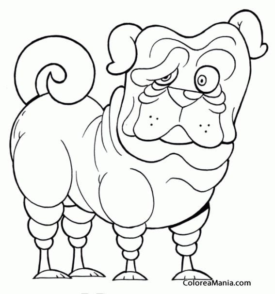 Colorear Perro Shar Pei Comic Animales Domésticos Dibujo