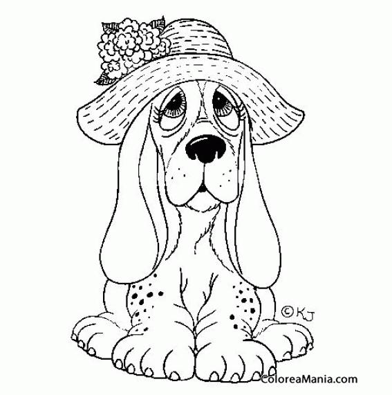 Colorear Perro Basset Hound Con Sombrero Animales Domésticos