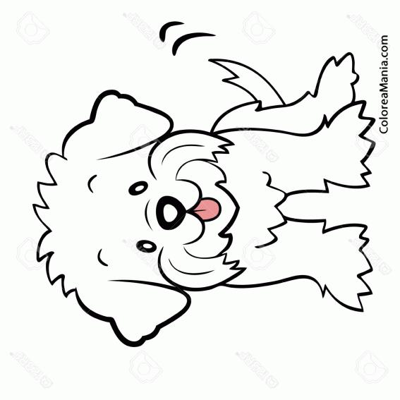 Dibujos Para Colorear Perro. Dibujo Para Colorear Perro ...
