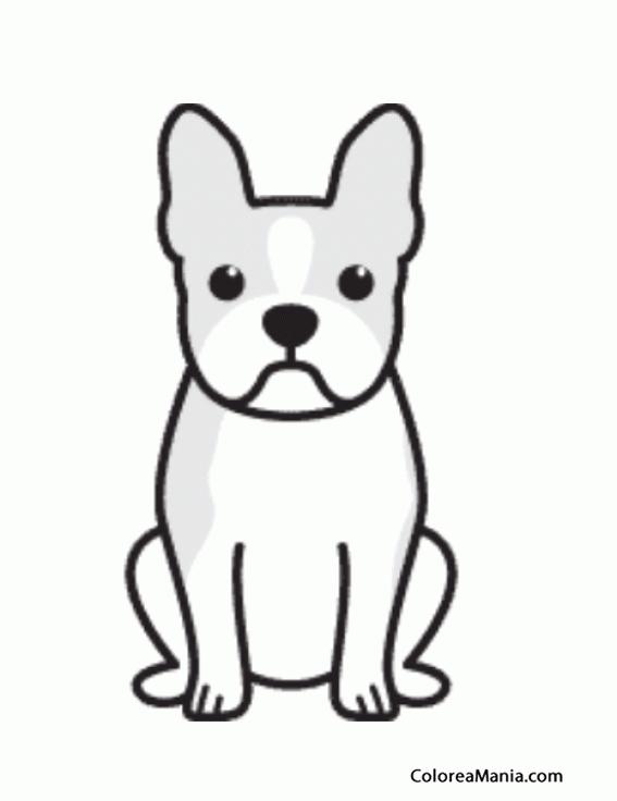 Colorear silueta perro boston terrier animales domsticos - Siluetas para imprimir ...