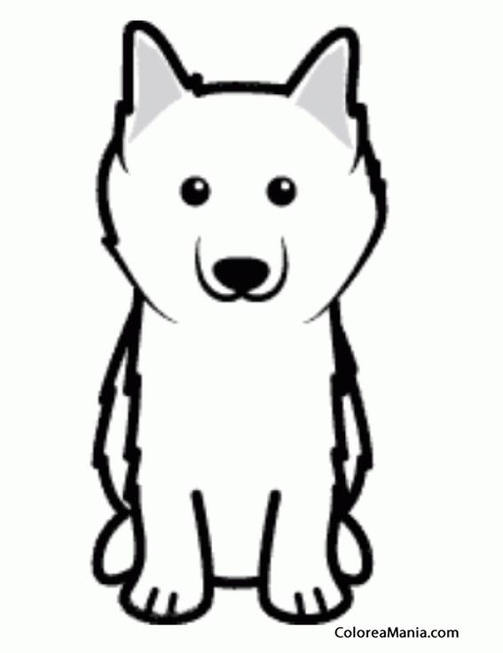Colorear Silueta Perro esquimal americano (Animales Domésticos