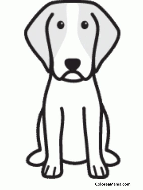 Colorear SIlueta perro Brittany (Animales Domsticos