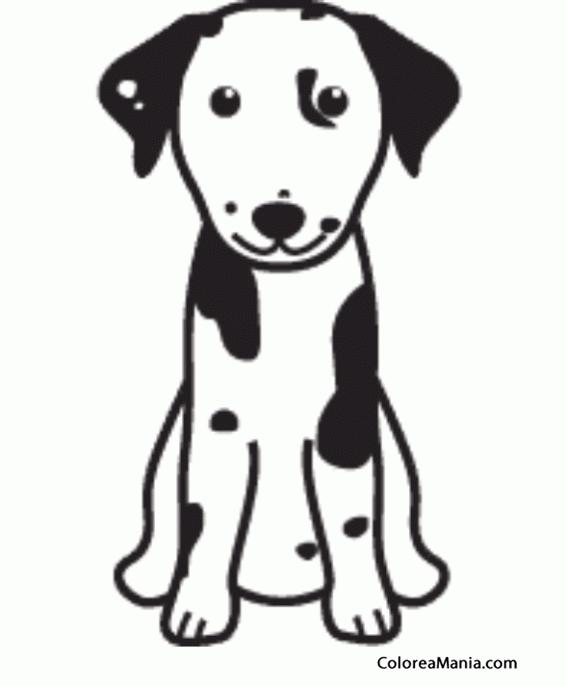 Colorear Silueta Perro Dálmata (Animales Domésticos), dibujo para ...