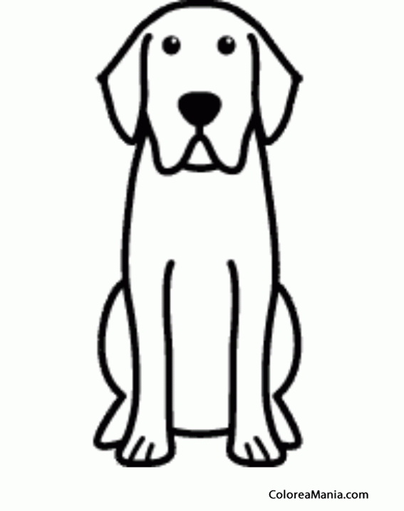 Colorear Silueta Perro Labrador retriever Animales Domsticos