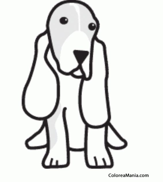 Colorear Silueta Perro Basset Hound Animales Domésticos Dibujo