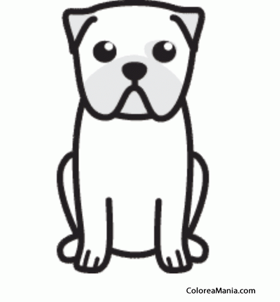 Colorear Silueta Perro Carlino o Pug (Animales Domésticos), dibujo ...