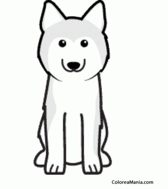 Colorear Silueta Perro Husky Siberiano (Animales Domésticos), dibujo ...