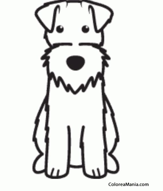 Colorear Silueta Perro Fox terrier de pelo duro (Animales Domésticos ...