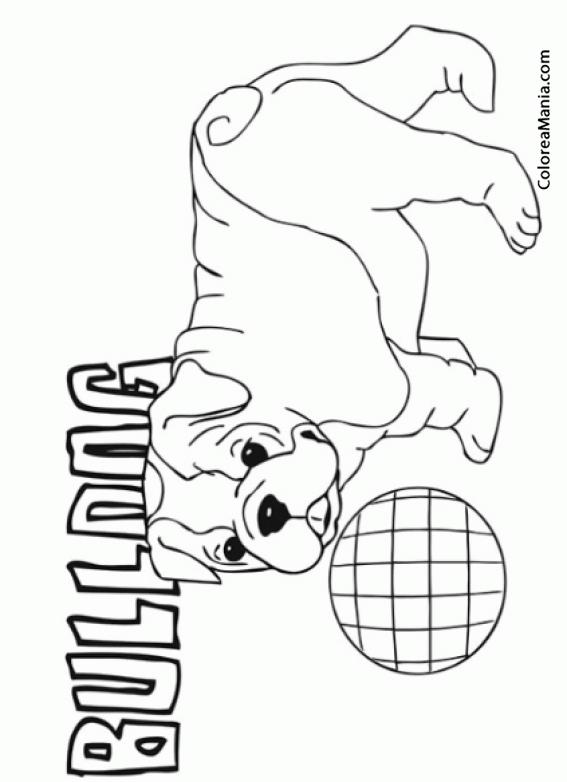 Atractivo Dibujos Para Colorear Cachorros Gratis Fotos - Páginas ...
