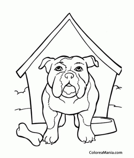 Lujoso Páginas Para Colorear De Bulldog Inglés Para Imprimir ...