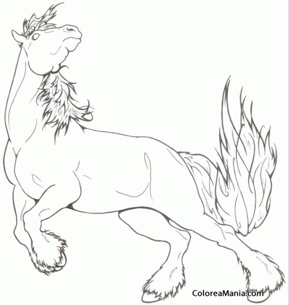 Colorear Caballo Gotland (Animales Domésticos), dibujo para colorear ...