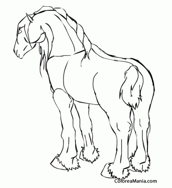 Colorear Caballo Perchern  dibujo lineal Animales Domsticos