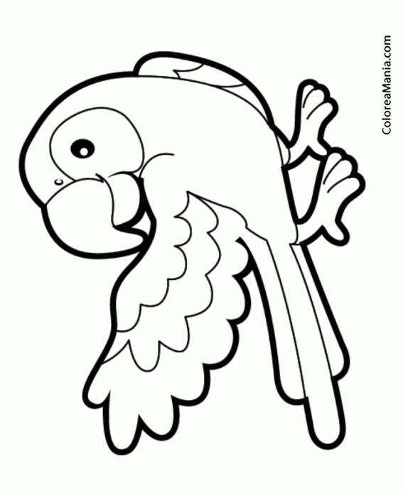 Colorear Loro con ala extendida (Aves), dibujo para colorear gratis