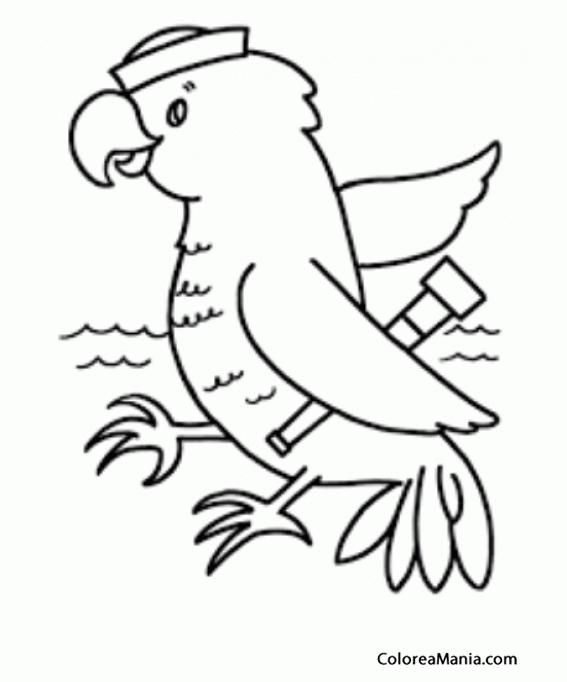 Colorear Loro. Papagayo marinero (Aves), dibujo para colorear gratis