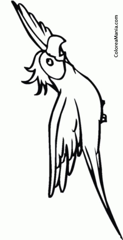 Famoso Fluttershy Volando Para Colorear Inspiración - Ideas Para ...