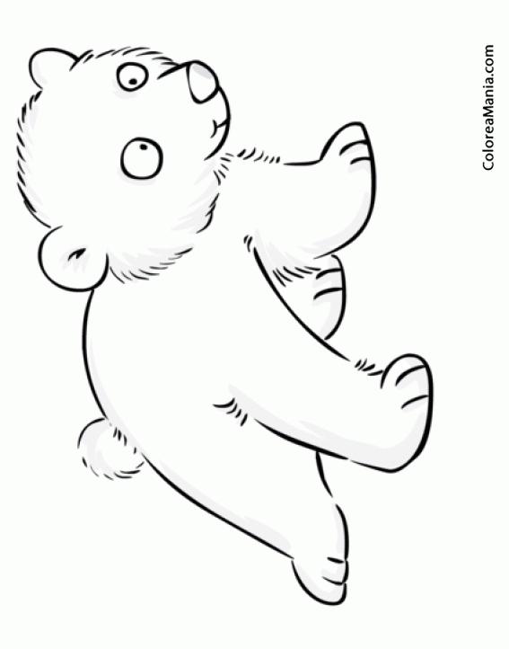 Colorear beb de oso polar animales polares dibujo para - Dibujos pared bebe ...