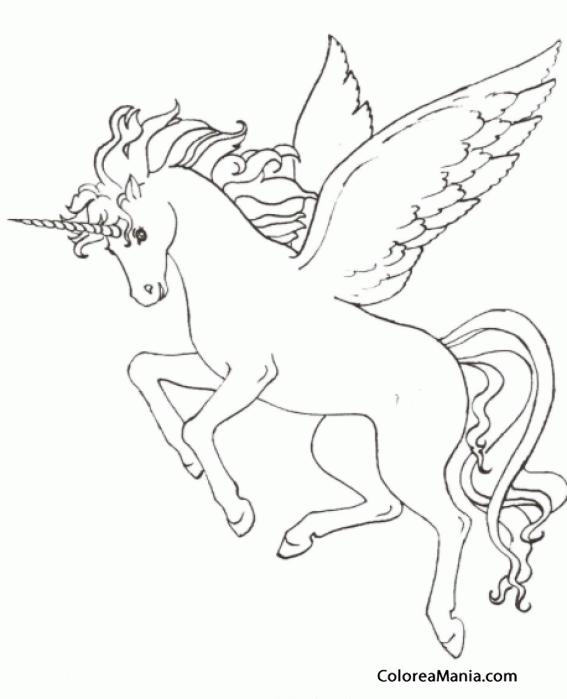 Colorear Pegaso Con Cuerno De Unicornio Animales
