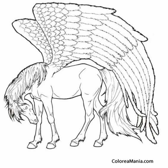 Pegasus Coloring Pages With Long Hair