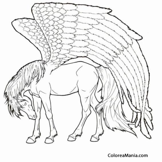 Colorear Pegaso de alas enormes (Animales Fantásticos), dibujo para ...