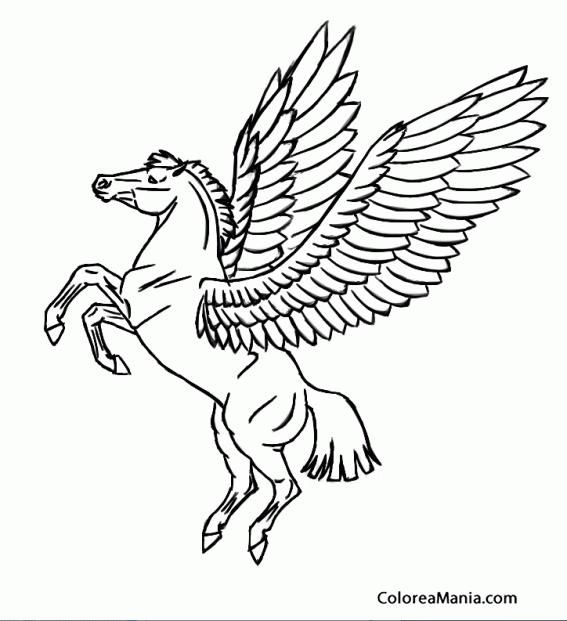 Como Dibujar Llamas De Fuego Imagui | sokolvineyard.com