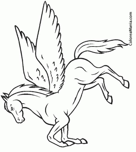 Colorear Pegaso alzado de patas (Animales Fantásticos), dibujo para ...