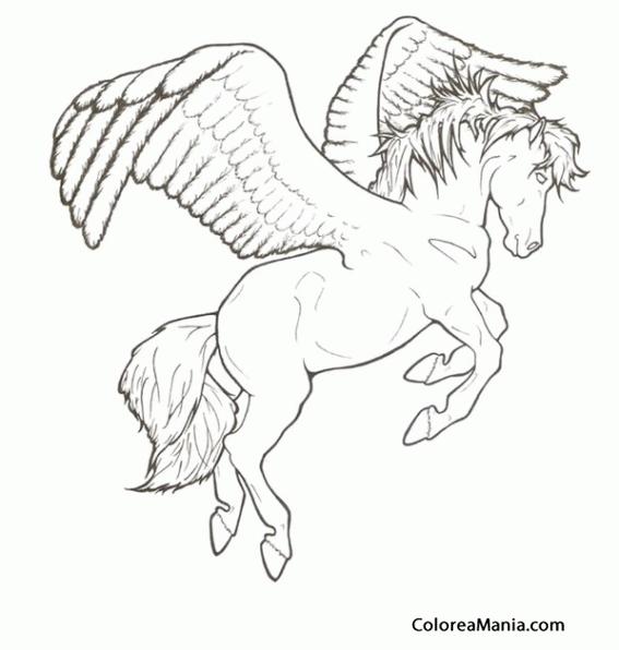 Colorear Pegaso. Pegasus. Pégase 5 (Animales Fantásticos), dibujo ...