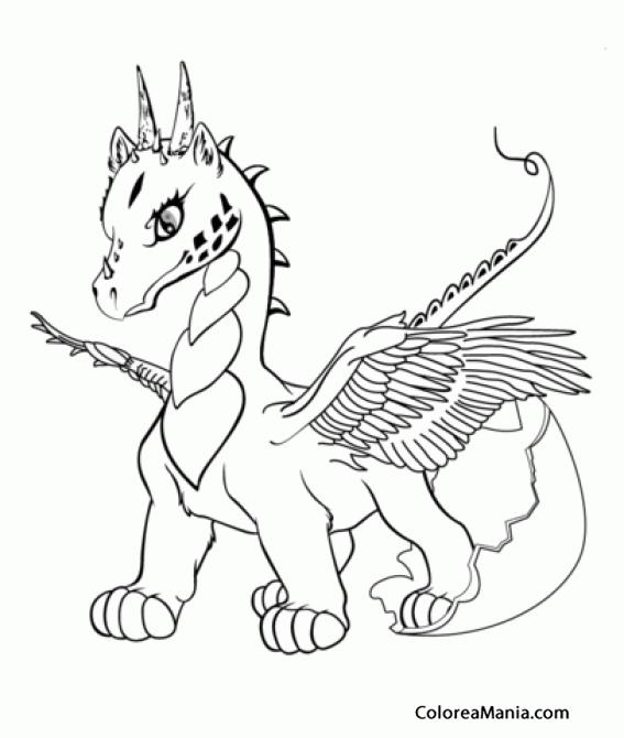Colorear Dragón Bebé (Animales Fantásticos), dibujo para colorear gratis