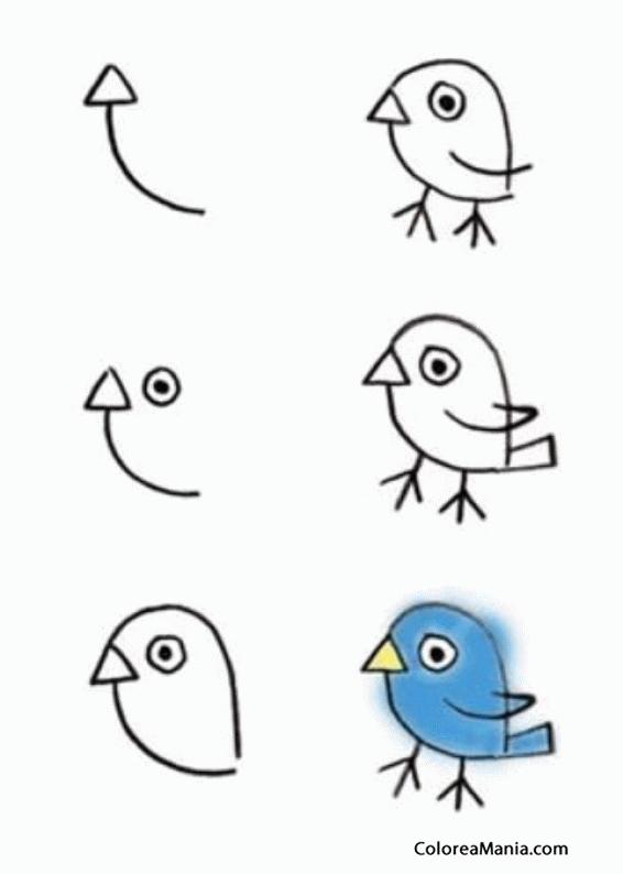 Colorear Dibujar Pajarito Azul Cómo Dibujar Animales