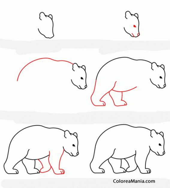 Perfecto Página Para Colorear De Oso Grizzly Bandera - Páginas Para ...