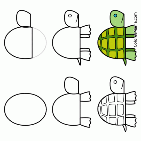 Colorear Dibujar Tortuga De Tierra 2 Como Dibujar Una Tortuga