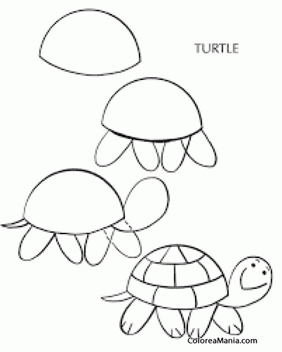 Colorear How to draw a turtle