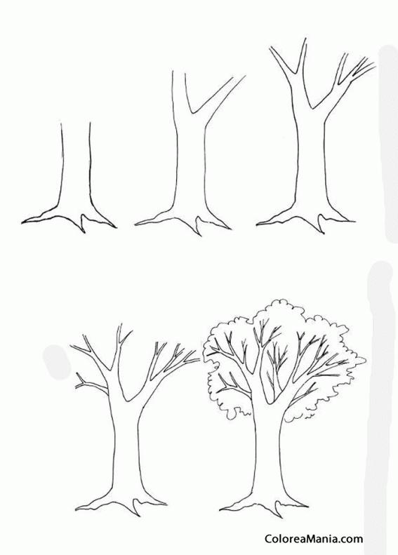 Colorear Como dibujar un árbol 2 (Cómo dibujar flores y ...