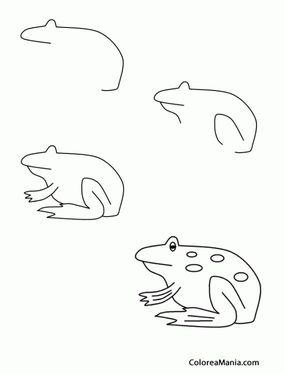 colorear dibujando una rana